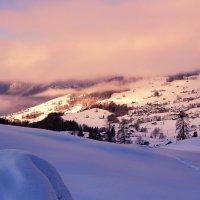 winter morning :: Elena Wymann