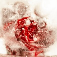 Сердце Снежной Королевы :: Андрей Щетинин