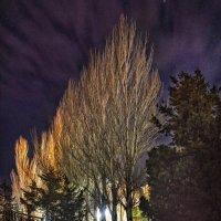 Ночной город :: Александр Довгий
