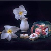 Овсяное печенье :: Svetlana Galvez