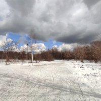 Тепло на лыжной трассе :: Игорь Ч.
