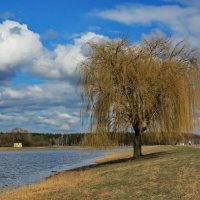 Апрельский пейзаж :: Liliya Kharlamova