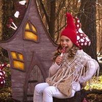 Гномик и его сказочный дом :: Екатерина Фетисова