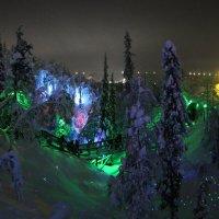Ночь в Таинственном лесу :: Ольга