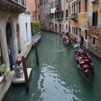 Прогулки по Венеции .... :: Алёна Савина