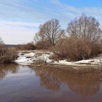 Очищаются речные берега... :: Лесо-Вед (Баранов)