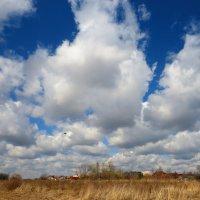 Тучки небесные :: Андрей Снегерёв