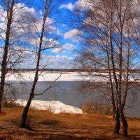 Весной :: владимир тимошенко