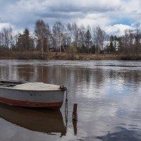 Весна на реке Дубне. :: Виктор Евстратов
