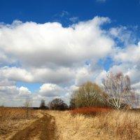 Пейзаж с облаками :: Андрей Снегерёв