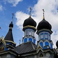 Купола церкви иконы Божией Матери.г Друскининкай. :: Светлана Хращевская