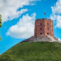 Башня Гедимина. Вильнюс. Литва. :: Олег Кузовлев