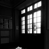 свет и тень :: Елена