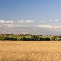 Поле, деревня и самолёт. :: Alexandr Gunin