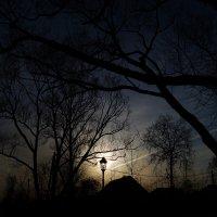 фонарь :: Андрей Иванов