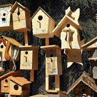Ещё дворцы для птичек) :: Татьяна Лютаева