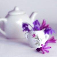 Маленькие радости весенней роскоши :: liudmila drake