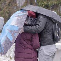 Под зонтом ... :: Светлана Мельник