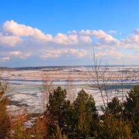 На реке :: владимир тимошенко