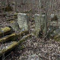 Кладбище. :: Николай Сидаш