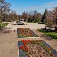 В весеннем парке :: Андрей K.