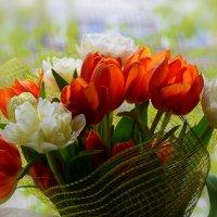 День рождения, к сожалению, только раз в году:-) :: Ольга Русанова (olg-rusanowa2010)