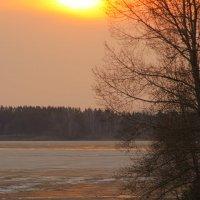 У озера.Вечер. :: Владилен Панченко