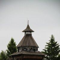 Архитектурно-этнографический музей «Хохловка».Сторожевая башня :: Любовь