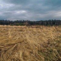 Весна похожая на осень :: юрий поляков