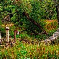 Заброшенный, древний, навесной мостик :: Анатолий Клепешнёв