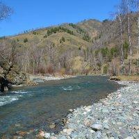 Река Чемал. :: Валерий Медведев