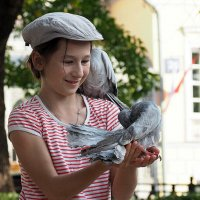 ребенок и голуби :: Олег Лукьянов