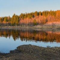 Май на реке Ухта (Республика Коми). По воде плывут маленькие льдинки, травы и листочков еще нет :: Николай Зиновьев