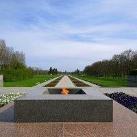 На Пискарёвском кладбище :: Вера Щукина