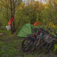 Утро в палаточном лагере :: Сергей Цветков