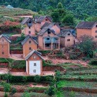 Мадагаскар :: Евгений Печенин