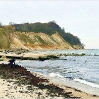 Поиски янтаря в водорослях после шторма. :: Валерия Комова