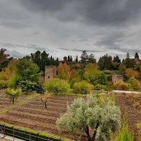 Alhambra 13 :: Arturs Ancans