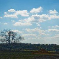Апрельское небо... :: Михаил Болдырев