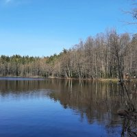 Озеро Глухое :: Елена Павлова (Смолова)