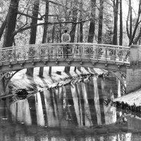 Ажурный мостик... :: Elena Ророva