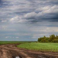 Весенняя дорога :: Сергей Шаталов