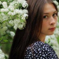 Весна пришла :: Анатолий Шулков