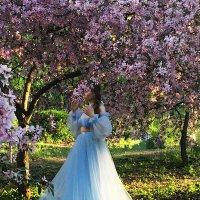 Один раз в год сады цветут! :: Надежда