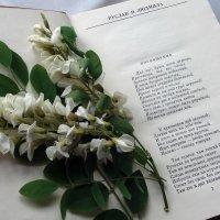 К дню рождения А.С.Пушкина :: Galina Solovova