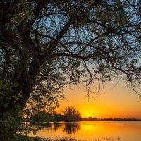 Огненный закат в низовьях Волги :: Сергей Сабешкин
