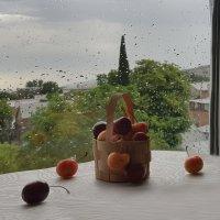 Когда дождь :: Наталья (D.Nat@lia)