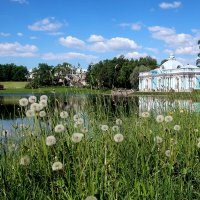Июнь в Екатерининском парке :: Ирина Фирсова