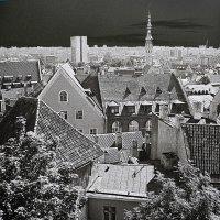 Старый Таллинн :: Alexandr Krepky