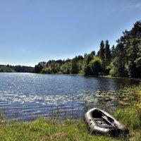 На озере. В ожидании :: Наталья